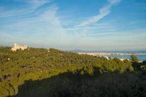 Otros en Palma - Bonanova - 36566